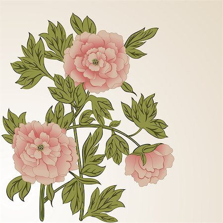 peony illustrations - Vector background with peony flowers on branch Stock Photo - Budget Royalty-Free & Subscription, Code: 400-08056705
