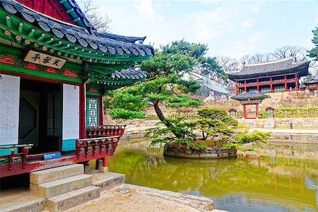 Secert gardan in Changdeokgung at day, seoul sourth koren. Stock Photo - Budget Royalty-Free & Subscription, Code: 400-08051908