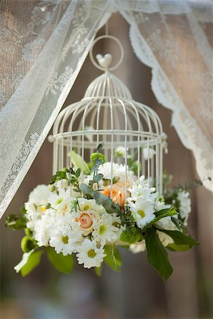 peony backgrounds - White flowers in cage, wedding decorations on sunny day Stock Photo - Budget Royalty-Free & Subscription, Code: 400-08070800