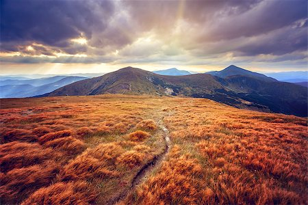 Mountain path in the Carpathian mountains. Panorama Stock Photo - Budget Royalty-Free & Subscription, Code: 400-08153258