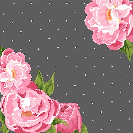 peony illustrations - floral background of bright peonies Stock Photo - Budget Royalty-Free & Subscription, Code: 400-08160994