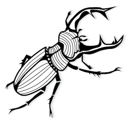 svetap (artist) - Male stag beetle, Lucanus cervus vector tattoo or for T-shirts Stock Photo - Budget Royalty-Free & Subscription, Code: 400-08192557