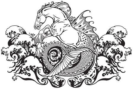 hippocampus or kelpie mythological sea horse . Black and white illustration Stock Photo - Budget Royalty-Free & Subscription, Code: 400-08298776