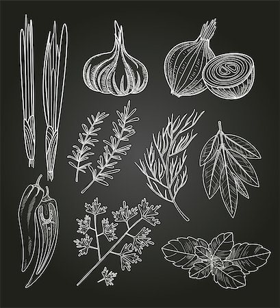 Culinary Herbs and Spices. Handdrawn Vector Vintage Illustration. Stock Photo - Budget Royalty-Free & Subscription, Code: 400-08349184