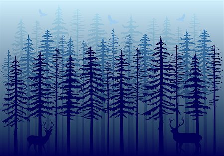 Blue winter forest with fir trees, deer and flying birds, vector illustration Stock Photo - Budget Royalty-Free & Subscription, Code: 400-08407795