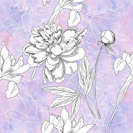 peony in vector - Seamless pattern with  black and white flowers. Vector floral illustration Stock Photo - Budget Royalty-Free & Subscription, Code: 400-08413471