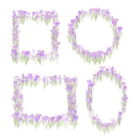 Set of Vector floral pattern frames with snowdrop and crocus flowers Stock Photo - Budget Royalty-Free & Subscription, Code: 400-08413907