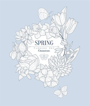 Spring Flowers Vintage Vector Hand Drawn Design Card Stock Photo - Budget Royalty-Free & Subscription, Code: 400-08506111