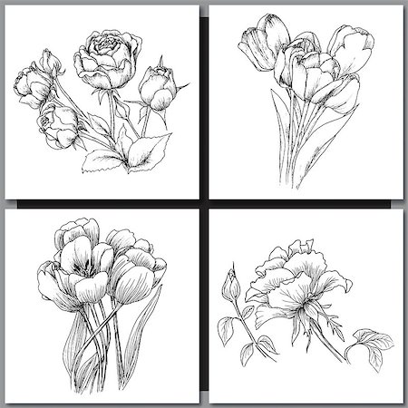 Set of Romantic vector background with hand drawn flowers isolated on white.  Ink drawing illustration. Line art sketching. Floral design for wedding invitations, cards, congratulations, branding. Stock Photo - Budget Royalty-Free & Subscription, Code: 400-08573327