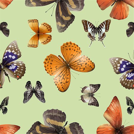 Seamless pattern from butterflies, vector illustration, clip-art Stock Photo - Budget Royalty-Free & Subscription, Code: 400-08616877