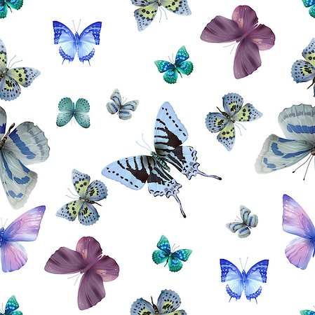 Seamless pattern from butterflies, vector illustration, clip-art Stock Photo - Budget Royalty-Free & Subscription, Code: 400-08616878