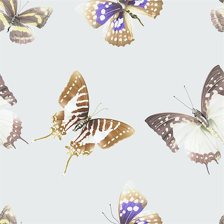 Seamless pattern from butterflies, vector illustration, clip-art Stock Photo - Budget Royalty-Free & Subscription, Code: 400-08616881