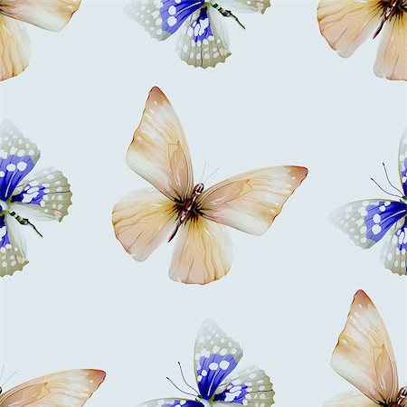 Seamless pattern from butterflies, vector illustration, clip-art Stock Photo - Budget Royalty-Free & Subscription, Code: 400-08617704