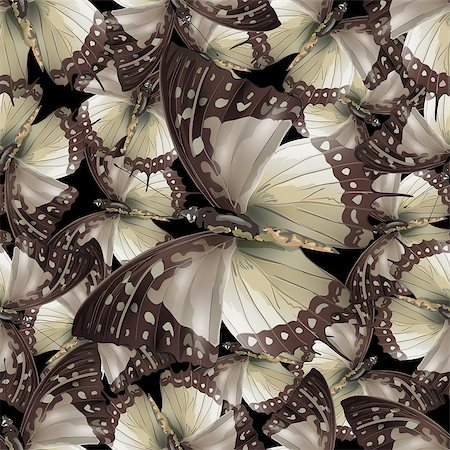 Seamless pattern from butterflies, vector illustration, clip-art Stock Photo - Budget Royalty-Free & Subscription, Code: 400-08674292