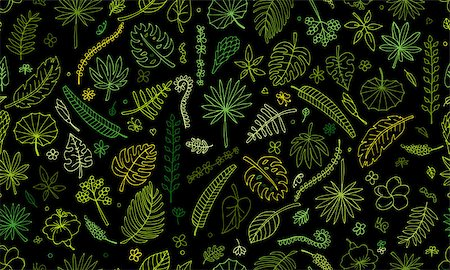 Tropical plants, seamless pattern for your design. Vector illustration Stock Photo - Budget Royalty-Free & Subscription, Code: 400-08680925