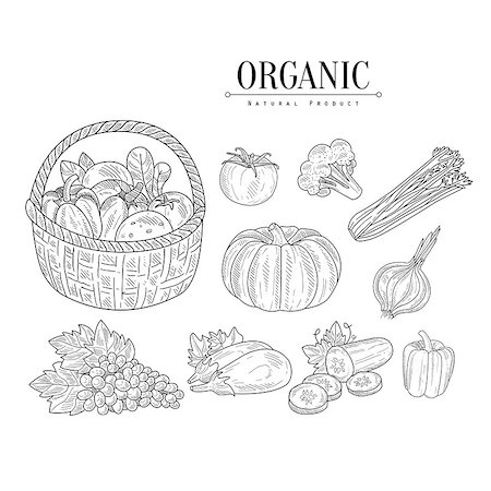 Organic Farm Vegetables Isolated Hand Drawn Realistic Sketches. Hand Drawn Detailed Contour Illustration On White Background. Stock Photo - Budget Royalty-Free & Subscription, Code: 400-08775976