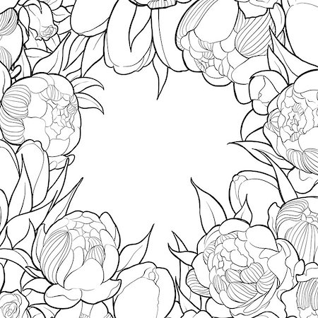 painting a peony bud - Frame of black and white peonies and roses Stock Photo - Budget Royalty-Free & Subscription, Code: 400-08786804