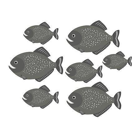 piranha fish - Piranha a school of fish. vector illustration for children isolated on white background Stock Photo - Budget Royalty-Free & Subscription, Code: 400-08835330