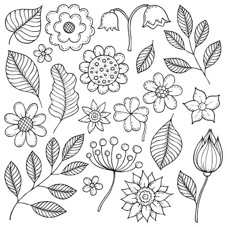 flower drawings black - Drawings of flowers and leaves theme 1 - eps10 vector illustration. Stock Photo - Budget Royalty-Free & Subscription, Code: 400-08967056