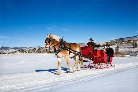 Sleigh ride through winter landscape. Stock Photo - Budget Royalty-Free & Subscription, Code: 400-03926875