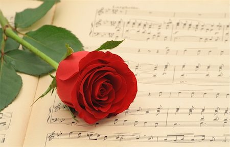 sheet music background - Vintage sheet music with red rose - focus on the rose (shallow DOF) Stock Photo - Budget Royalty-Free & Subscription, Code: 400-03933678