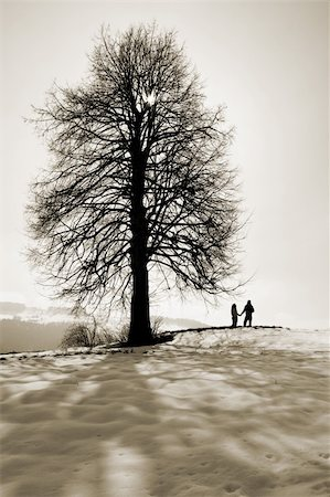 A couple holding hands under a tree in snow. Sepia tone. Stock Photo - Budget Royalty-Free & Subscription, Code: 400-03964743
