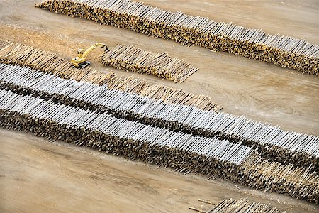 Aerial view of stacks of logs Stock Photo - Premium Royalty-Free, Code: 604-00754215