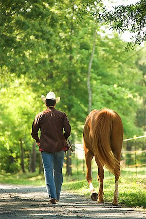 Man with horse Stock Photo - Premium Royalty-Free, Code: 604-00754345