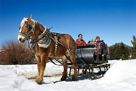 Horse drawn sleigh Stock Photo - Premium Royalty-Free, Code: 604-00762169