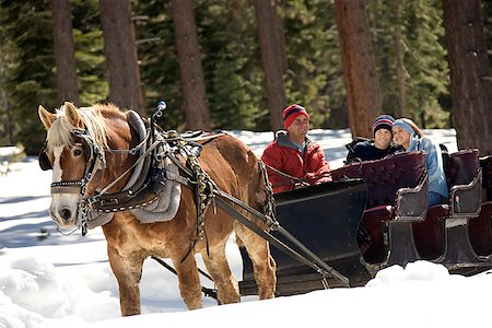 Horse drawn sleigh Stock Photo - Premium Royalty-Free, Code: 604-00762177