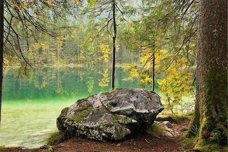 fall trees lake - Lake Hintersee, Berchtesgaden National Park, Bavaria, Germany Stock Photo - Premium Royalty-Free, Code: 600-04424934