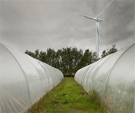 Computer Composite of Wind Turbine and Greenhouses, Iceland Stock Photo - Premium Royalty-Free, Code: 600-05524159