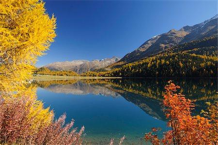 Autumn andscape, Lake Silvaplana, Engadin, Grisons, Switzerland Stock Photo - Premium Royalty-Free, Code: 600-05524311