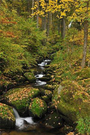 stream - Forest Stream, Triberg im Schwarzwald, Schwarzwald-Baar, Black Forest, Baden-Wurttemberg, Germany Stock Photo - Premium Royalty-Free, Code: 600-05524505