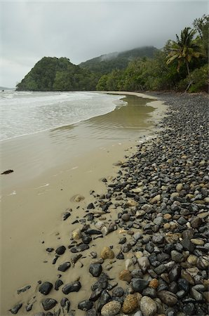queensland - Emmagen Beach, Daintree National Park, Queensland, Australia Stock Photo - Premium Royalty-Free, Code: 600-05609637