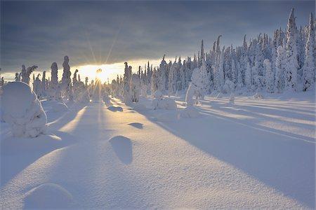 Valtavaara, Kuusamo, Northern Ostrobothnia, Oulu Province, Finland Stock Photo - Premium Royalty-Free, Code: 600-05609967