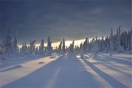 Kuusamo, Northern Ostrobothnia, Oulu Province, Finland Stock Photo - Premium Royalty-Free, Code: 600-05609968