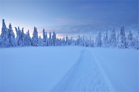 Kuusamo, Northern Ostrobothnia, Oulu Province, Finland Stock Photo - Premium Royalty-Free, Code: 600-05609969