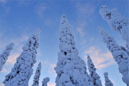 Kuusamo, Northern Ostrobothnia, Oulu Province, Finland Stock Photo - Premium Royalty-Free, Code: 600-05609971