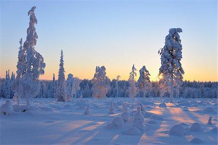 Kuusamo, Northern Ostrobothnia, Oulu Province, Finland Stock Photo - Premium Royalty-Free, Code: 600-05609984