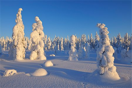 Kuusamo, Northern Ostrobothnia, Oulu Province, Finland Stock Photo - Premium Royalty-Free, Code: 600-05609989