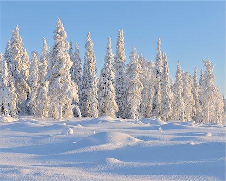 Kuusamo, Northern Ostrobothnia, Oulu Province, Finland Stock Photo - Premium Royalty-Free, Code: 600-05609980