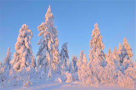 Kuusamo, Northern Ostrobothnia, Oulu Province, Finland Stock Photo - Premium Royalty-Free, Code: 600-05609983