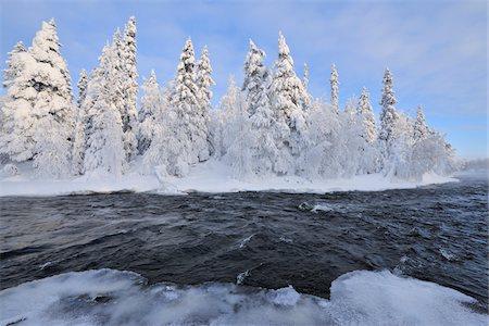 Kitkajoki River and Snow Covered Forest, Kuusamo, Northern Ostrobothnia, Finland Stock Photo - Premium Royalty-Free, Code: 600-05610025