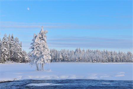 Kitkajoki River and Snow Covered Trees, Kuusamo, Northern Ostrobothnia, Finland Stock Photo - Premium Royalty-Free, Code: 600-05610027