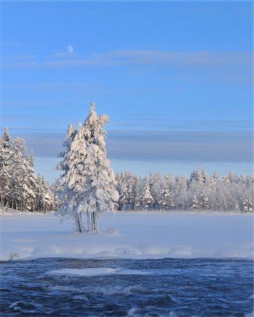 Kitkajoki River and Snow Covered Trees, Kuusamo, Northern Ostrobothnia, Finland Stock Photo - Premium Royalty-Free, Code: 600-05610028