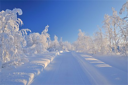 snow covered trees - Snowy Road, Liikasenvaara, Northern Ostrobothnia, Finland Stock Photo - Premium Royalty-Free, Code: 600-05610020