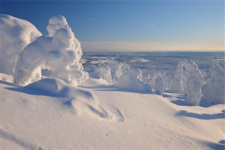 Snow Covered Trees, Rukatunturi, Kuusamo, Northern Ostrobothnia, Finland Stock Photo - Premium Royalty-Free, Code: 600-05610037