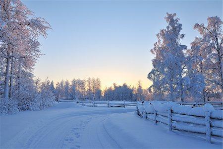 Snow Covered Road, Kuusamo, Northern Ostrobothnia, Finland Stock Photo - Premium Royalty-Free, Code: 600-05610043