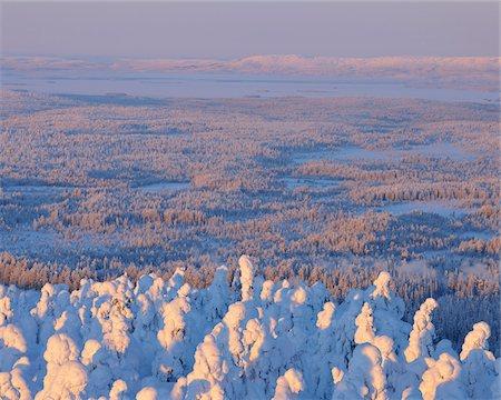 Snow Covered Landscape, Rukatunturi, Kuusamo, Northern Ostrobothnia, Finland Stock Photo - Premium Royalty-Free, Code: 600-05610055